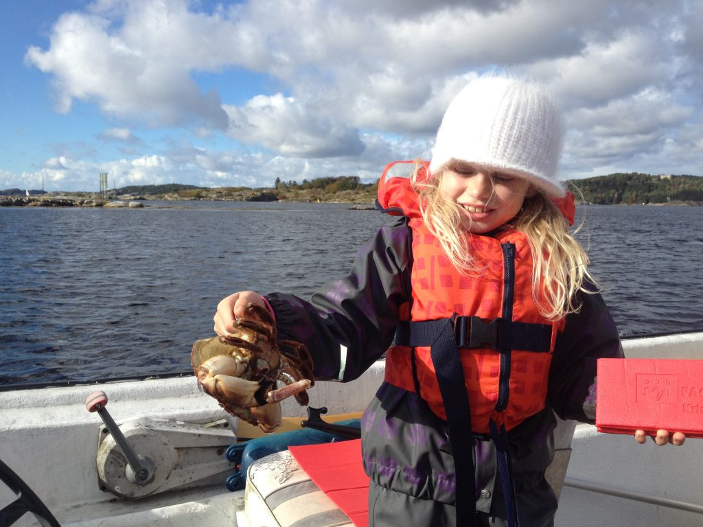 Krabbefiske Flekkerøy