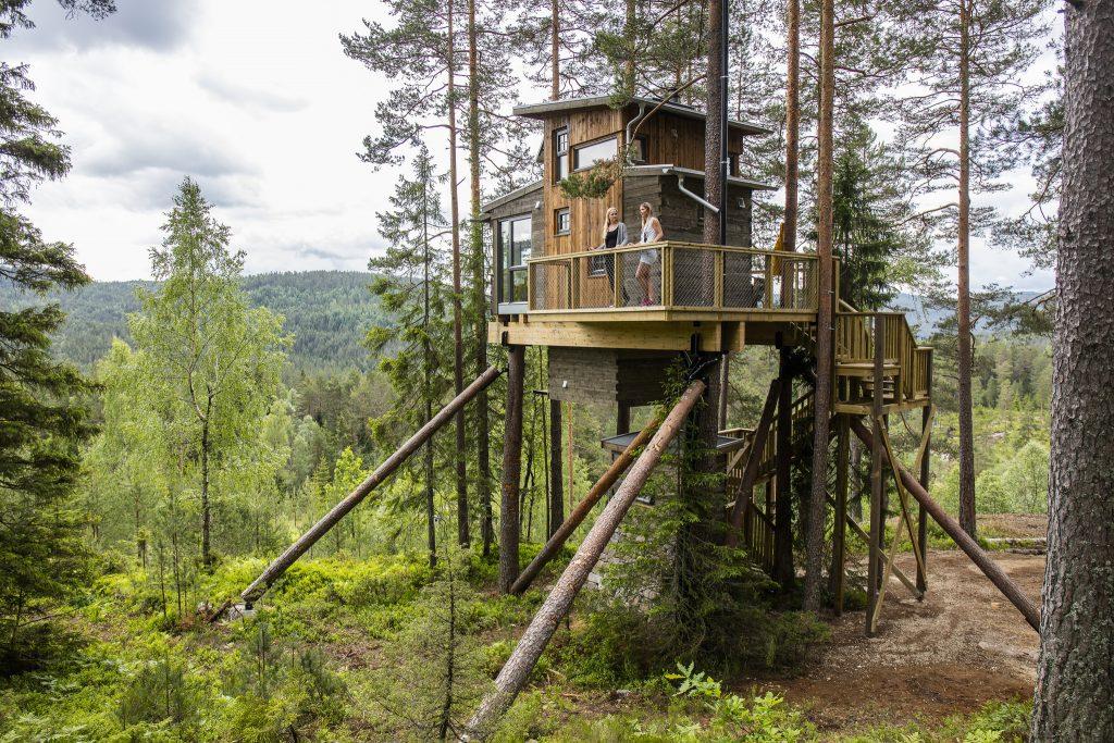 Overnatt i ei rålekker hytte i toppen av et tre. Foto: Adam Read©Visit Sørlandet