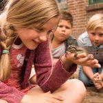 Lærer Frosk liten