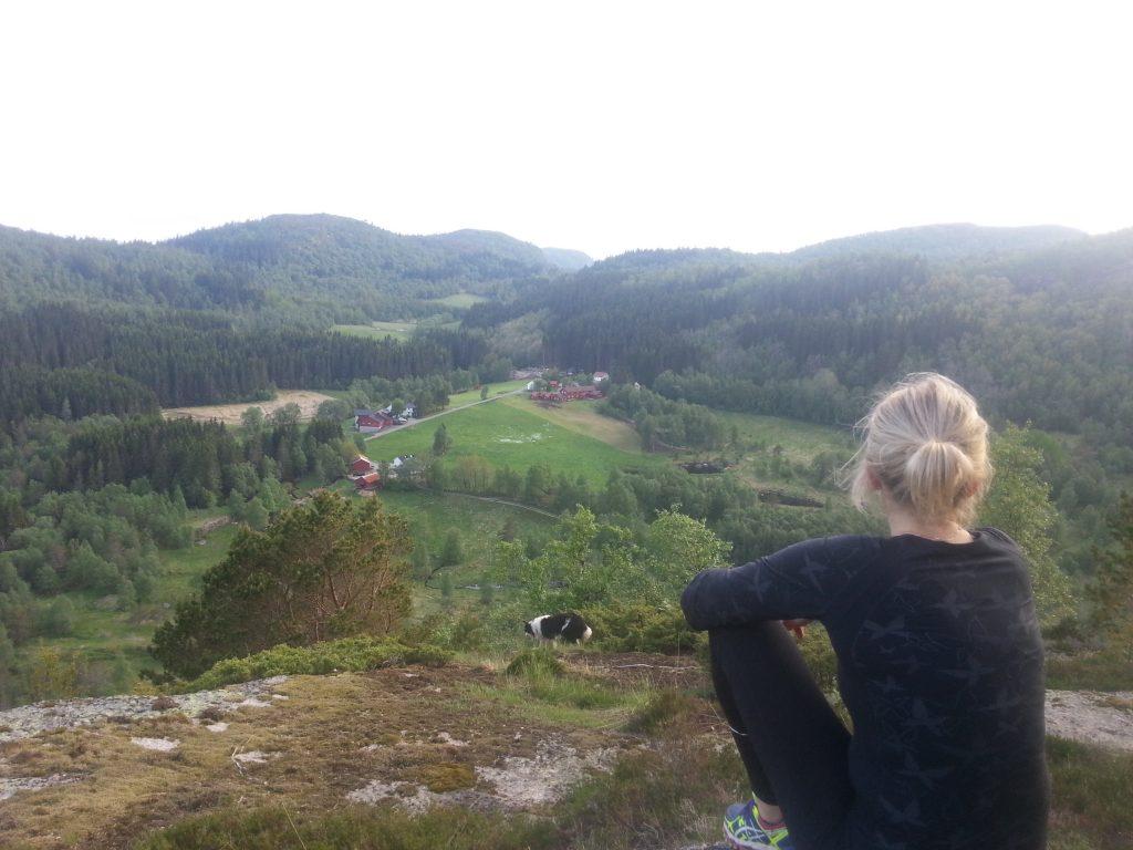 Utsikt over Heddan Gard i Hægebostad.