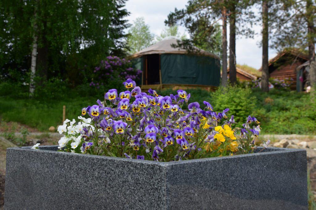 Rimelig ferie i luksustelt. Foto: E. Høibo©Visit Sørlandet