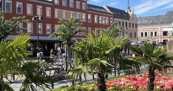 Kom på Mat i sentrum, matfestivalen på Torvet hvor du kan smake på lokale spesialiteter.