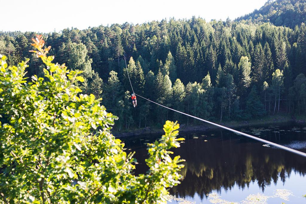 En dag i en klartepark vil hele familien kose seg i tretoppene. Foto: Høyt&Lavt Kristiansand