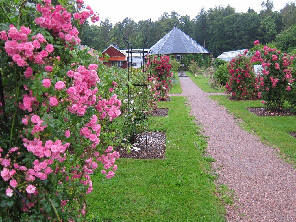 Agder naturmusem og botanisk hage