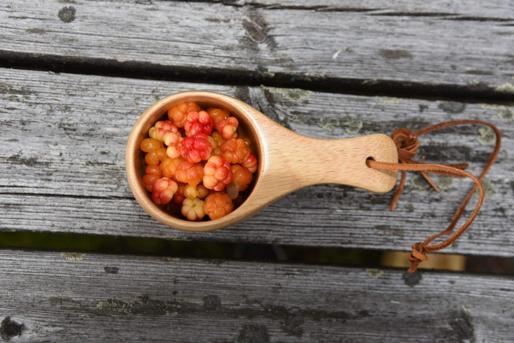 Sank din egen mat, plukk bær, sopp og annet godt fra naturen. a Foto Elisabeth Høibo©Visit Sørlandet