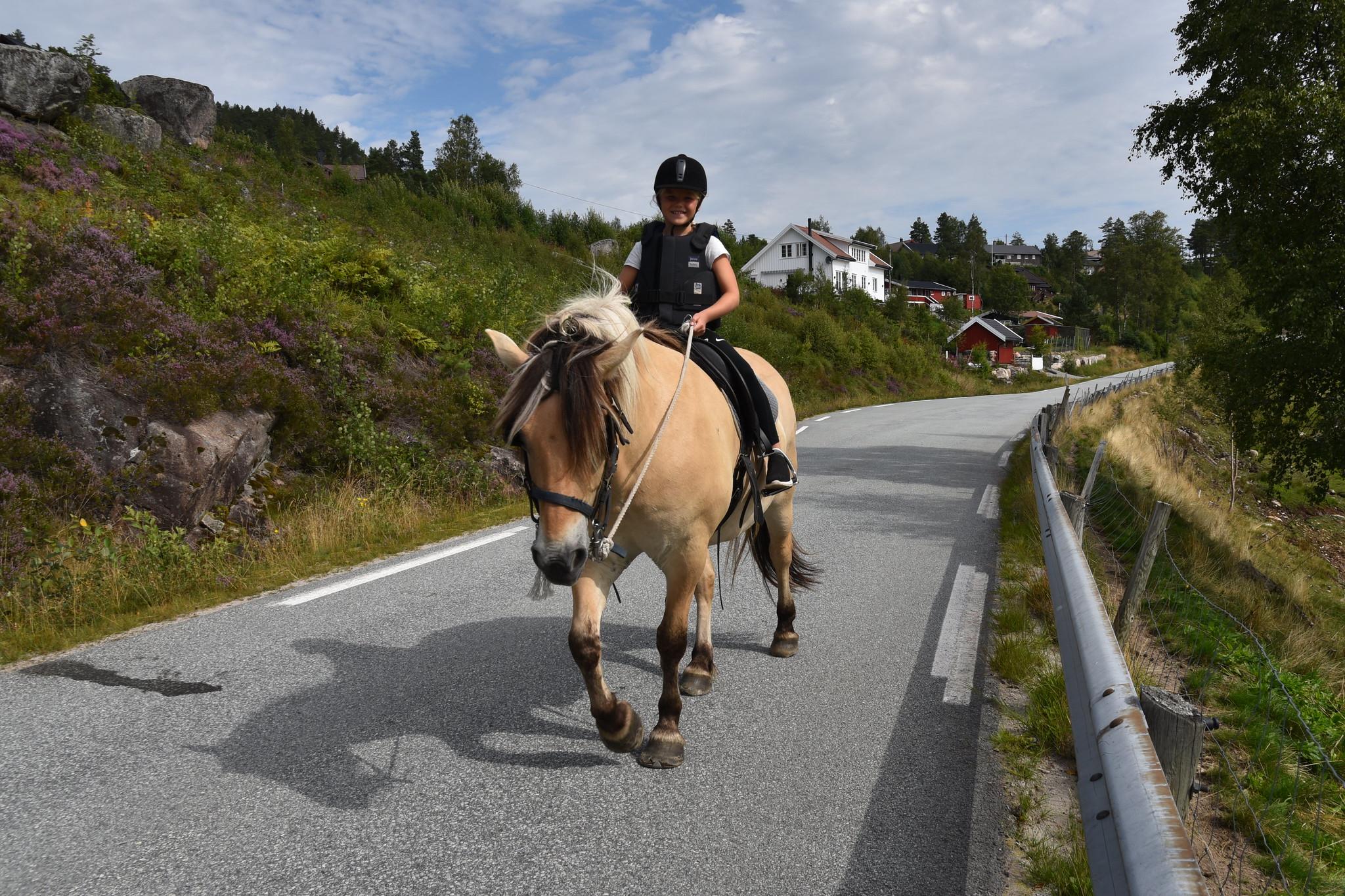 Barnevennlige hester tar deg trygt rundt i området. Foto: Elisabeth Høibo©Visit Sørlandet